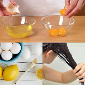cara menghilangkan rambut bercabang dengan menggunakan Masker Telur
